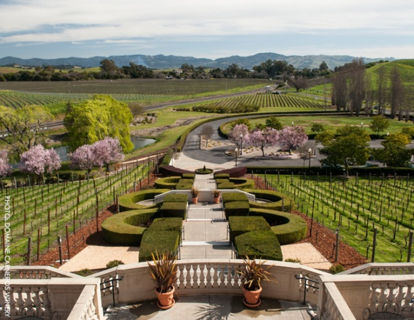 Domaine-Carneros_winery